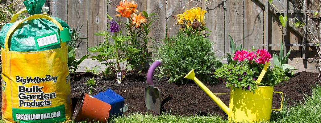 Bigyellowbag black garden soil lawn garden news for Black garden soil
