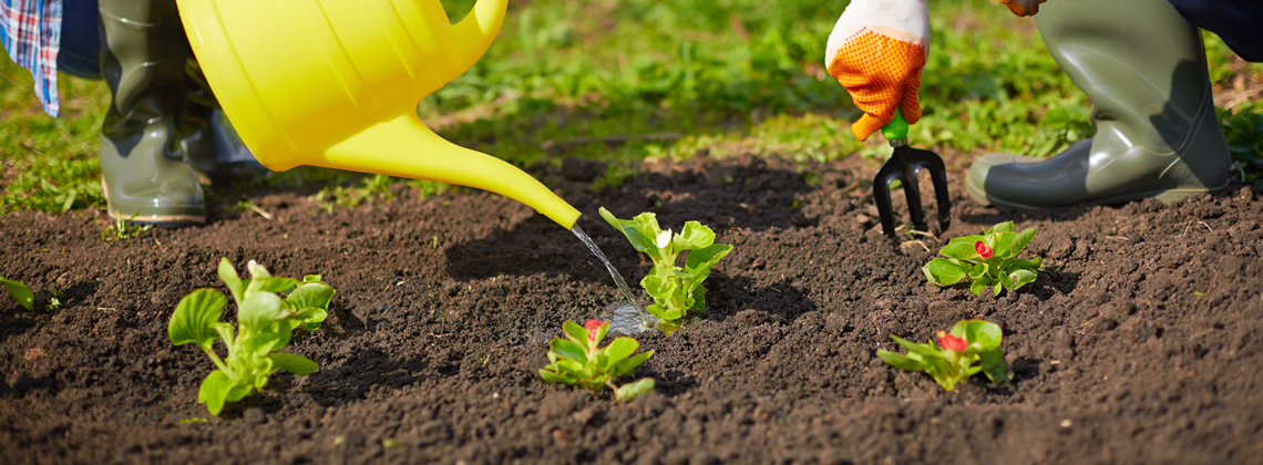 Why should i buy high quality soil for Quality topsoil