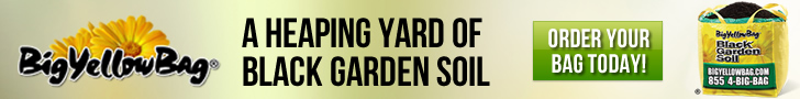 BigYellowBag Black Garden Soil Tools