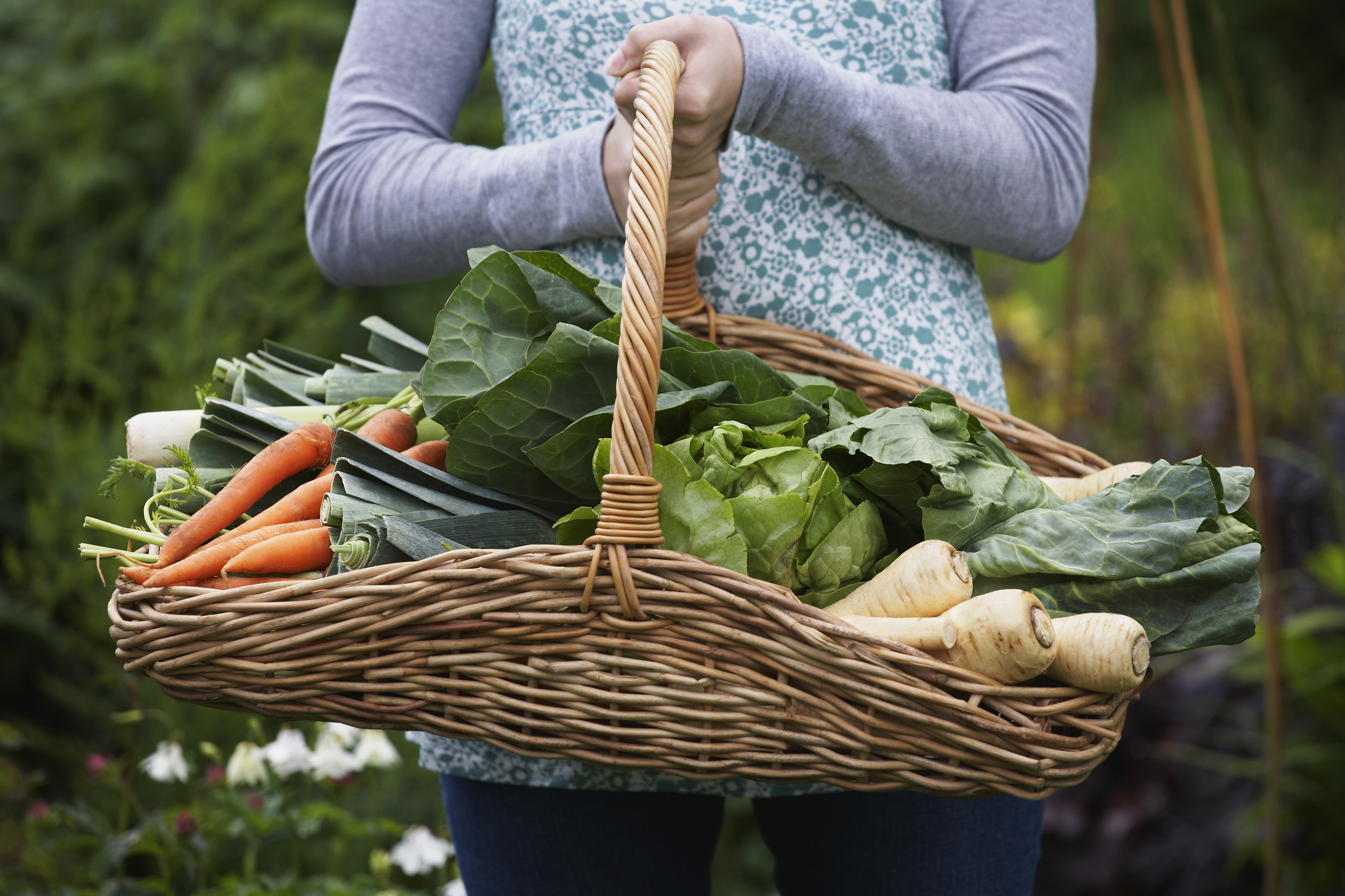 vegetable gardening through winter bigyellowbag black garden soil
